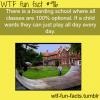 optional class