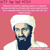 osama bin laden facts wtf fun facts