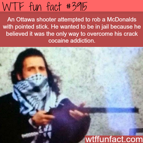 Ottawa shooter tries to rob McDonalds to cure his drug addiction - WTF fun facts