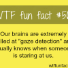 our brains can detect if someone is staring at us