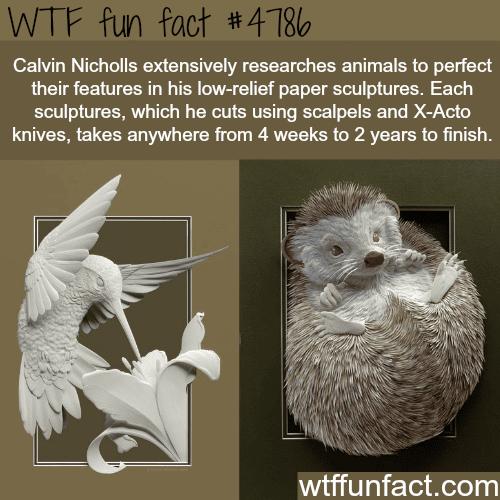 Paper art sculptures by Calvin Nicholls - WTF fun facts
