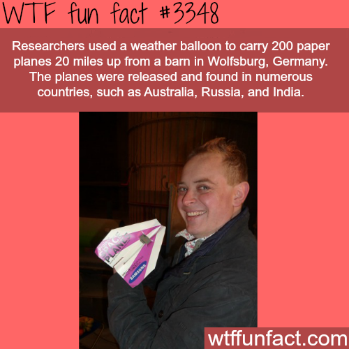 Paper planes flew over countries -  WTF fun facts