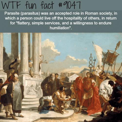 Parasite - WTF fun facts