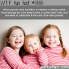 parents showing favoritism wtf fun facts