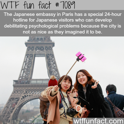 Paris Syndrome - WTF fun facts