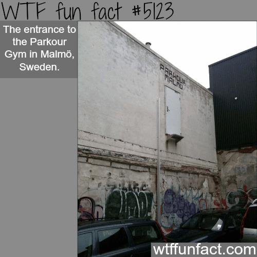 Parkour Gym in Malmo