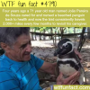 penguin travels 2000 miles every few months to