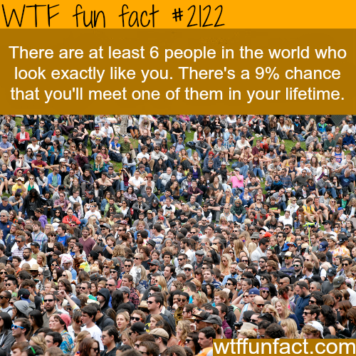 People that look like me - WTF fun facts