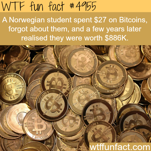 People who became rich from bitcoins - WTF fun facts
