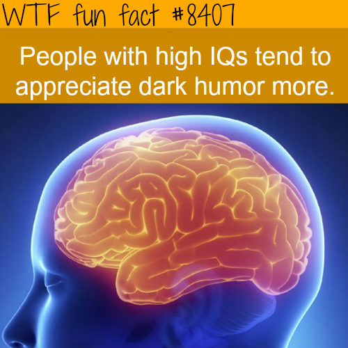 People with higher IQ enjoy dark humor  - WTF fun facts