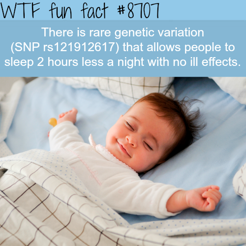 People with this genetic variation don't need to sleep  - WTF fun facts