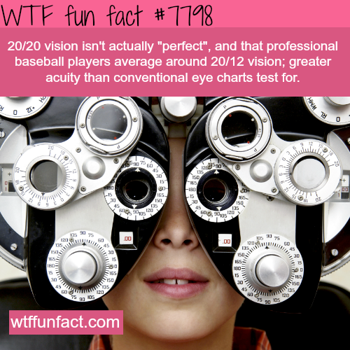 Perfect vision - WTF fun facts
