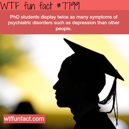 PhD students - WTF fun facts