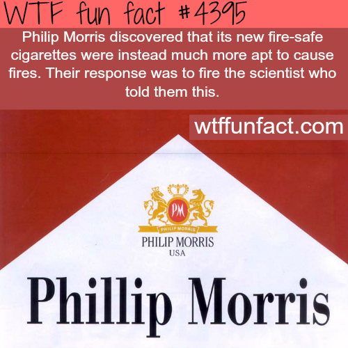 Philip Morris -   WTF fun facts
