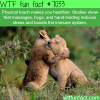 physical touch wtf fun facts