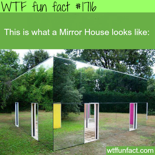 Picture of mirror house - WTF fun facts