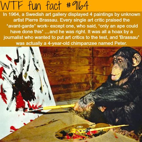 Pierre Brassau - WTF Fun Facts