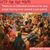 pirates and parrots wtf fun fact