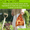 pizza farms facts