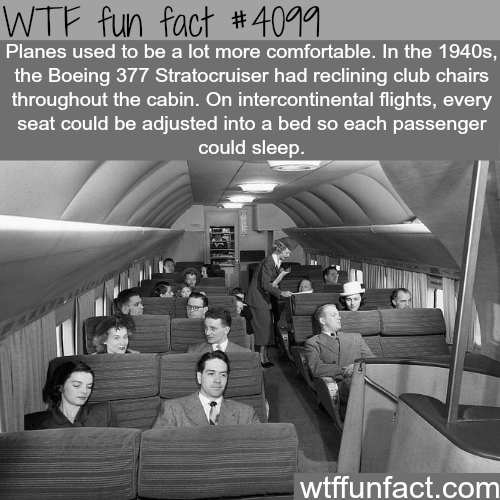 Planes used to be a lot more comfortable - WTF fun facts
