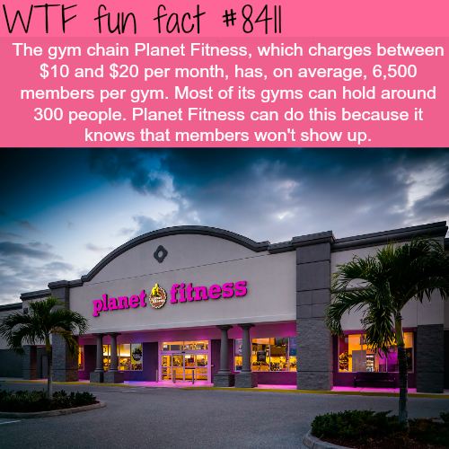 Planet Fitness - WTF fun facts