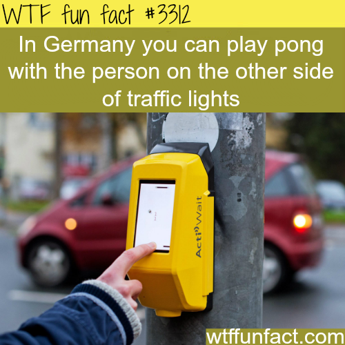Playing pong in Germany -  WTF fun facts