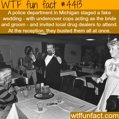 Police department fakes a wedding to bust drug dealers -   WTF fun facts