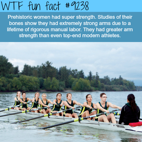 Prehistoric women - WTF fun fact