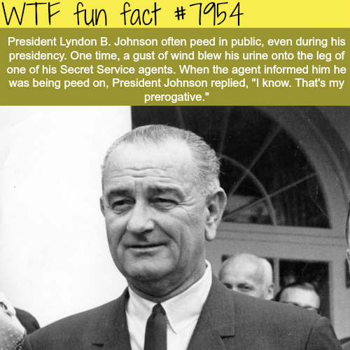 President Lyndon B. Johnson was a dick - WTF fun fact