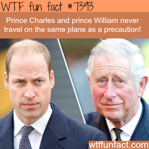Prince Charles and Prince William  - WTF fun facts
