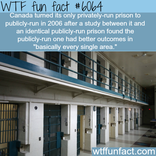 Private prisons are worst than public prisons - WTF fun facts
