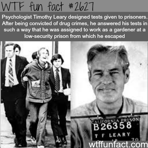Psychologist Timothy Leary  - WTF fun facts