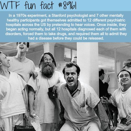Psychology experiment - WTF fun fact