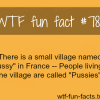 pusssy france