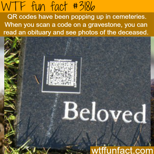 QR codes on the gravestones -WTF fun facts