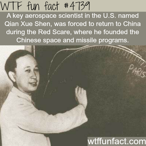 Quan Xue Shen - WTF fun facts