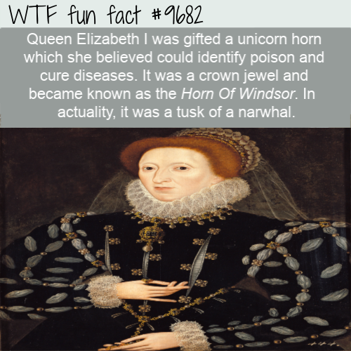 Queen Elizabeth I was gifted a unicorn horn which she believed could identify poison and cure diseases. It was a crown jewel and became known as the Horn Of Windsor. In actuality