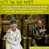 queen elizabeth ii wtf fun fact