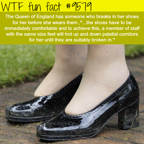 Queen of England has a shoe wearer - WTF fun fact