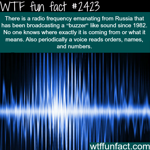 Radio Frequency from Russia - WTF fun facts