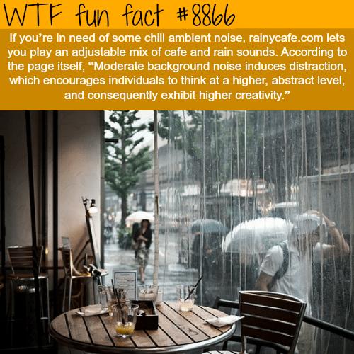 Rainycafe.com - WTF fun facts