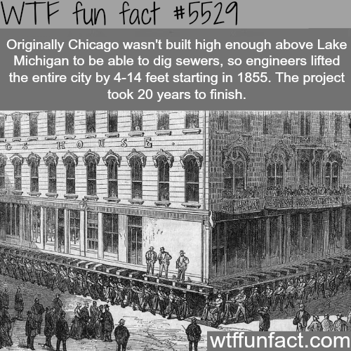 Raising Chicago - WTF fun facts
