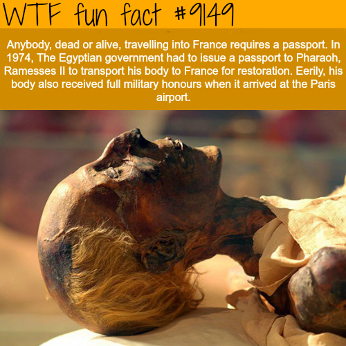Ramesses II had to be issued a passport to enter France - WTF Fun Facts