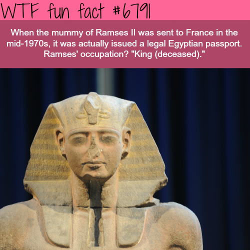 Ramses ll - WTF fun fact