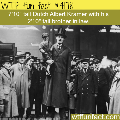 Rare historical pictures -  WTF fun facts