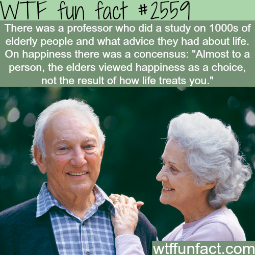 Real advice on life and how to be happy - WTF fun facts