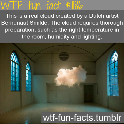 Real cloud in a room by dutch artist