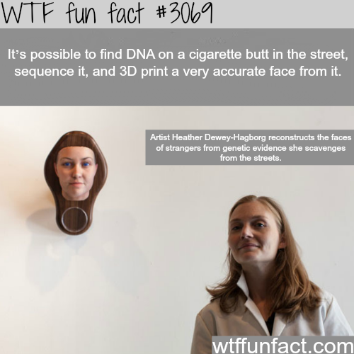 Reconstructing faces from cigarette faces -  WTF fun facts
