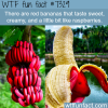red bananas wtf fun fact