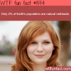 redheads populations
